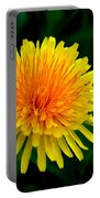 Dandy Among Daisies Portable Battery Charger