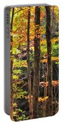 Dappled Sun On Fall Colors Portable Battery Charger