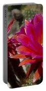 Dark Pink Cactus Flowers Portable Battery Charger
