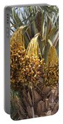 Date Palm In Fruit Portable Battery Charger