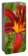 Day Lilly In Diffused Daylight Portable Battery Charger