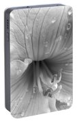 Day Lily Flower In Black And White Portable Battery Charger
