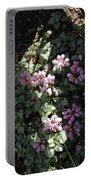 Dead Nettle Portable Battery Charger