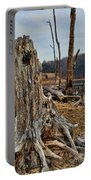 Dead Wood Portable Battery Charger by Paul Ward