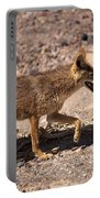 Death Valley Coyote Portable Battery Charger