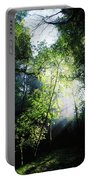 Deciduous Wood, Killarney National Portable Battery Charger