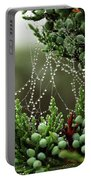 Decorated Bush Quogue Wildlife Preserve Portable Battery Charger