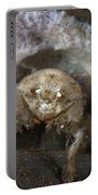 Decorator Crab With Mauve Sponge Portable Battery Charger
