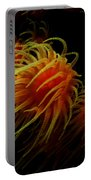 Deep Ocean Coral Polyp Portable Battery Charger