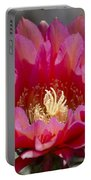 Deep Pink Cactus Flower Portable Battery Charger