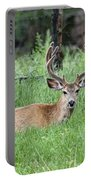 Deer At Rest Portable Battery Charger