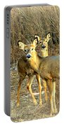 Deer Duo Portable Battery Charger