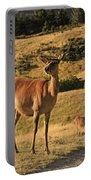 Deer On Mountain 2 Portable Battery Charger