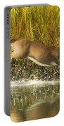 Deer Running Through The Salt Marsh Portable Battery Charger