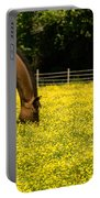 Delaware Dandilions Portable Battery Charger