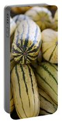 Delicata Winter Squash Portable Battery Charger