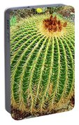 Desert Cactus Portable Battery Charger