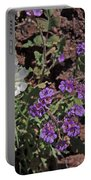 Desert Chicory And Heliotrope Portable Battery Charger