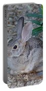 Desert Cottontail Portable Battery Charger