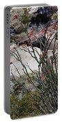 Desert Spring Portable Battery Charger