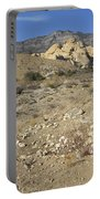 Desert Washout Portable Battery Charger