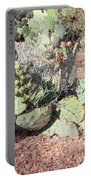 Desert's Collection Of Dried Flowers 3 Portable Battery Charger