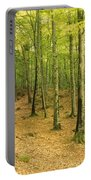 Devils Glen Woods, County Wicklow Portable Battery Charger