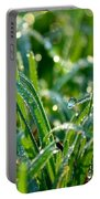 Dewdrops Portable Battery Charger