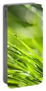 Dewy Green Grass  Portable Battery Charger