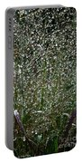 Diamonds By Nature Portable Battery Charger