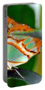 Dido Longwing Butterfly Portable Battery Charger
