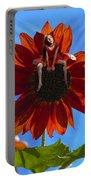 Digital Art Essay IIi Portable Battery Charger