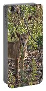Dingo In The Wild V3 Portable Battery Charger