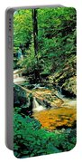 Distant Ozone Falls And Rapids - Summer Portable Battery Charger