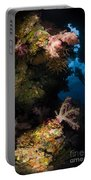 Diver In Soft Coral Seascape, Fiji Portable Battery Charger