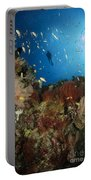 Diver Over Reef Seascape, Indonesia Portable Battery Charger
