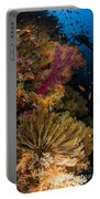 Diver Swims By Soft Corals And Crinoid Portable Battery Charger