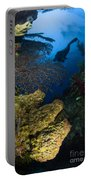 Diver Swims Over A Reef, Belize Portable Battery Charger