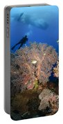 Diver Swims Over Sea Fans, Indonesia Portable Battery Charger