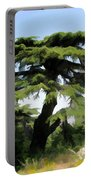 Do-00511 Cedar Forest Portable Battery Charger