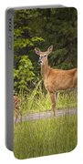 Doe And Fawn Along A Roadside Near Iron Mountain Michigan. Portable Battery Charger