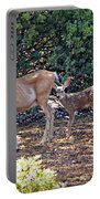Doe And Twin Fawns Portable Battery Charger