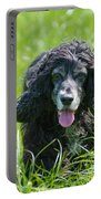 Dog On The Grass Portable Battery Charger