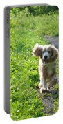 Dog Running In The Green Field Portable Battery Charger