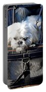 Doggie To Go Portable Battery Charger