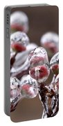 Dogwood Blooms - Sealed In Ice Portable Battery Charger