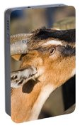 Domestic Goat Portable Battery Charger