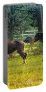 Domestic Horses Portable Battery Charger