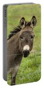 Donkey - The Beast Of Burden Portable Battery Charger