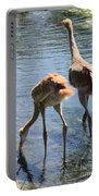 Sandhills Double Dipping Portable Battery Charger